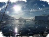 О путешествии в Антарктику